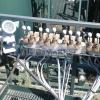Batch Mixer skid